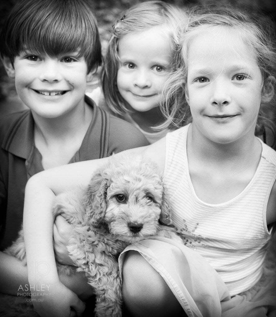 Ashley Photography, Child Portraits, Pet Portraits